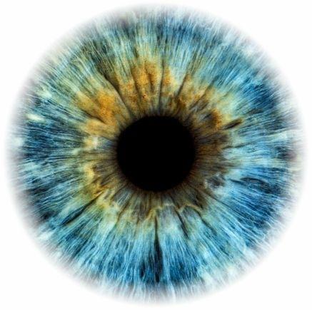 Auge klein